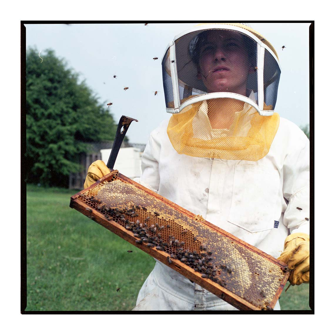 Katie Aerni and her bees